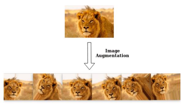image augmentation