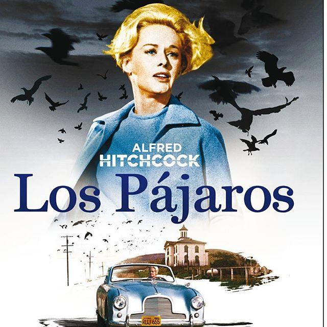 Los pájaros (1963, Alfred Hitchcock)