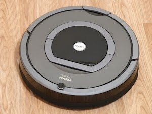What If Your Cat Scared of Roomba