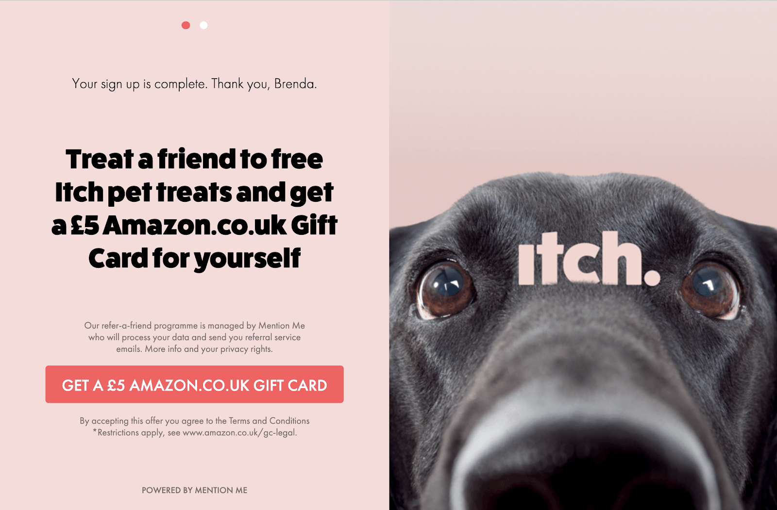 Itch referral programme