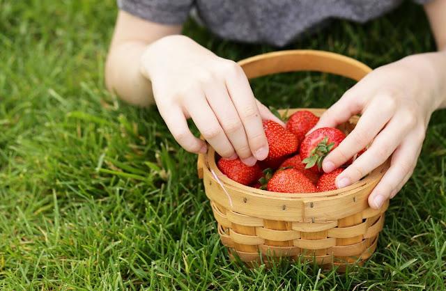 strawberries for children