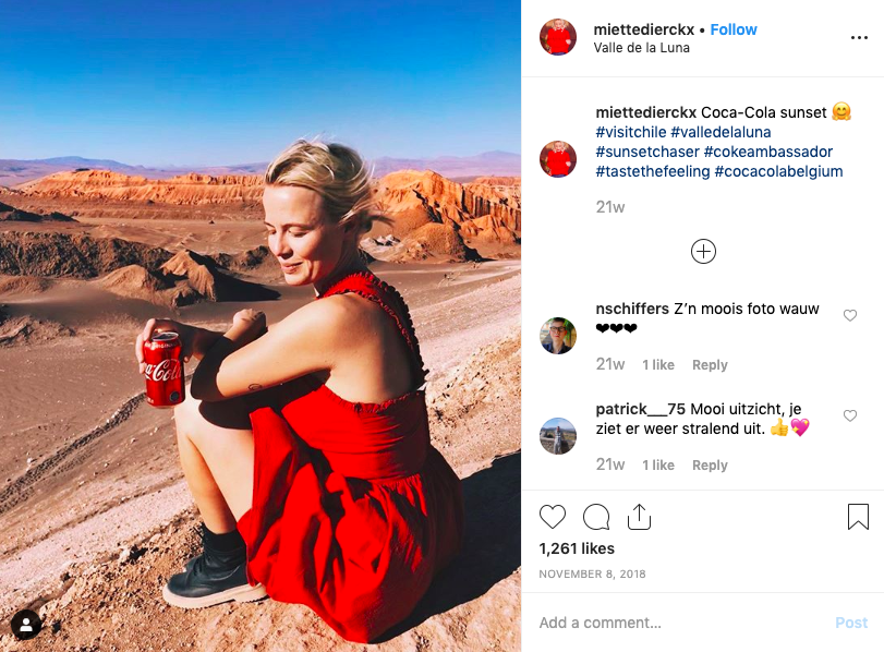 micro influencer campaign example