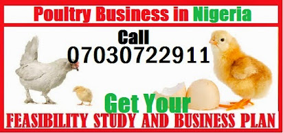 Business plan for egg production pdf