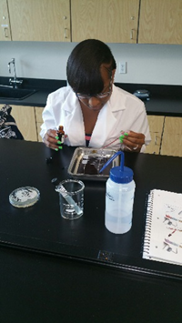 bacteria2.png
