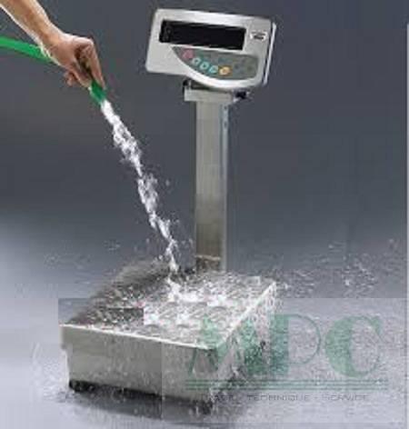 Cân thuỷ sản cần chống nước tốt