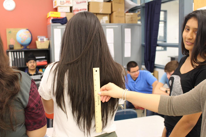 F:\Hair Pics\IMG_0147.jpg