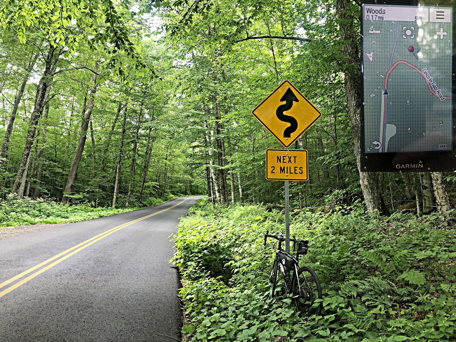 Cycling Lincoln Gap East - dense tree canopy along two lane road, bike propped against road sign noting winding road for next two miles