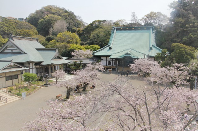 光明寺(神奈川)