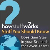 Does Gum Stay in Your Stomach for Seven Years?