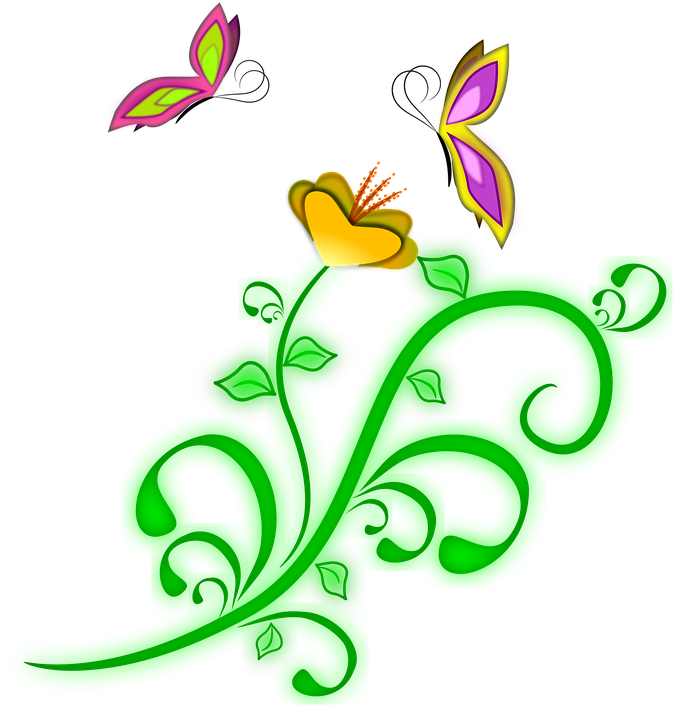 Free vector graphic: Flower, Butterflies, Spring, Vine - Free ...