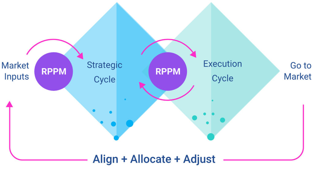double diamond strategy & execution, product portfolio management