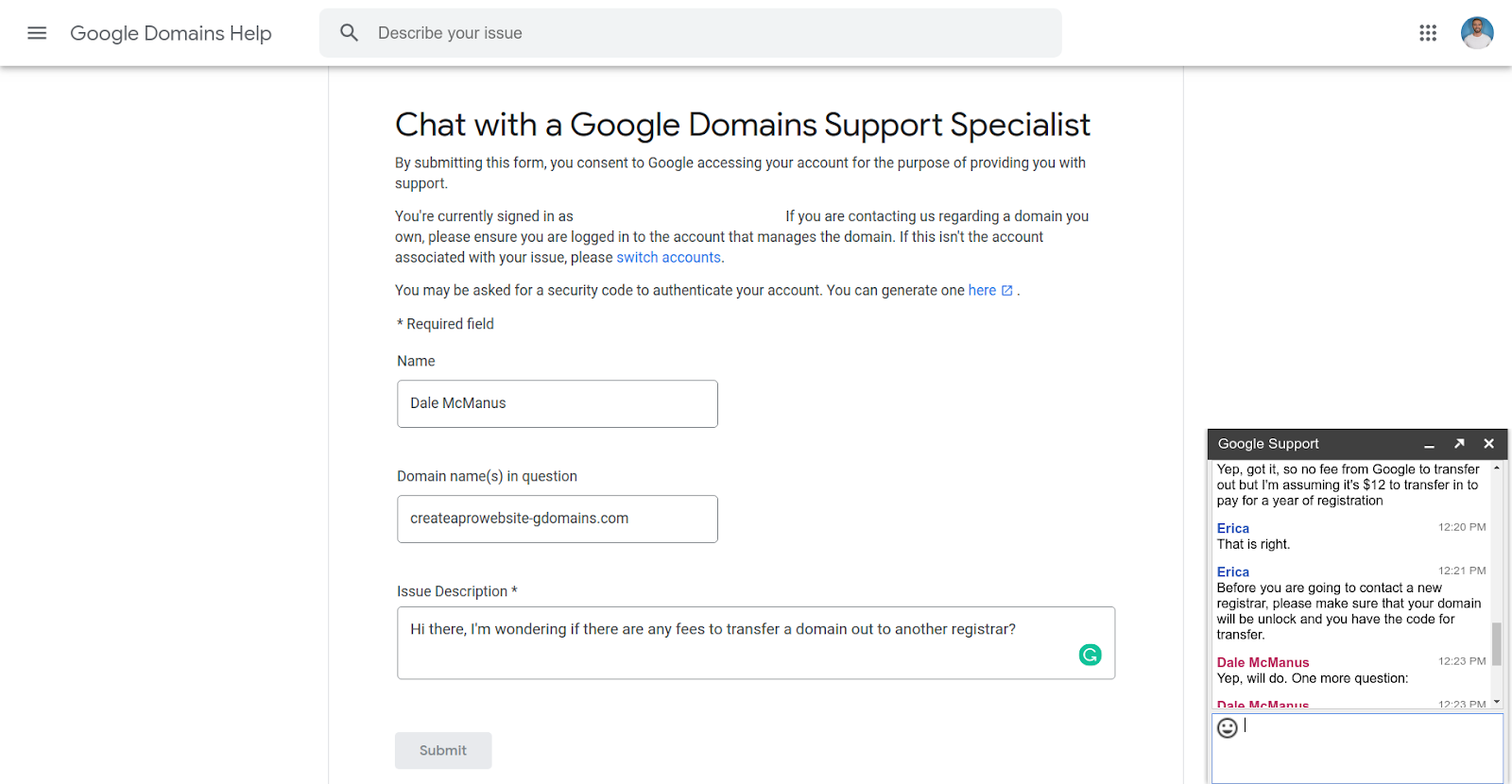 google domains support