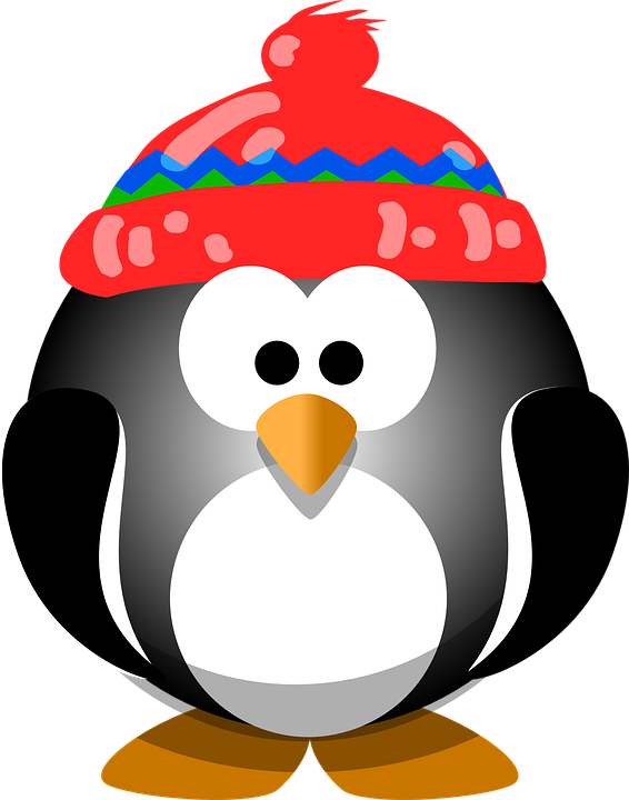 Penguin, Bird, Hat, Winter, ...