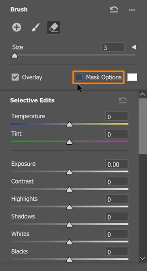 Disable the Mask Options to have a clear view of the objects that will change in color.