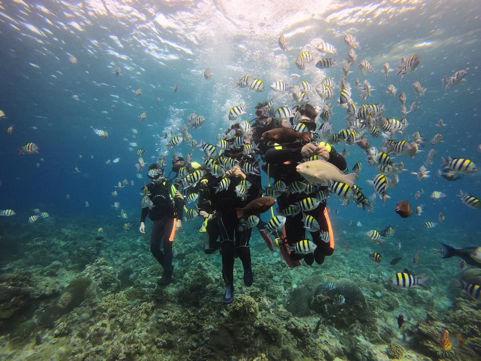 綠島石朗潛水區水質清澈
