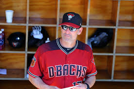 Image result for torey lovullo