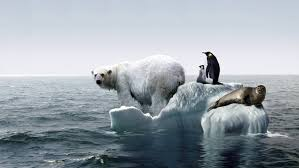 Concept of Global warming, causes and prevention