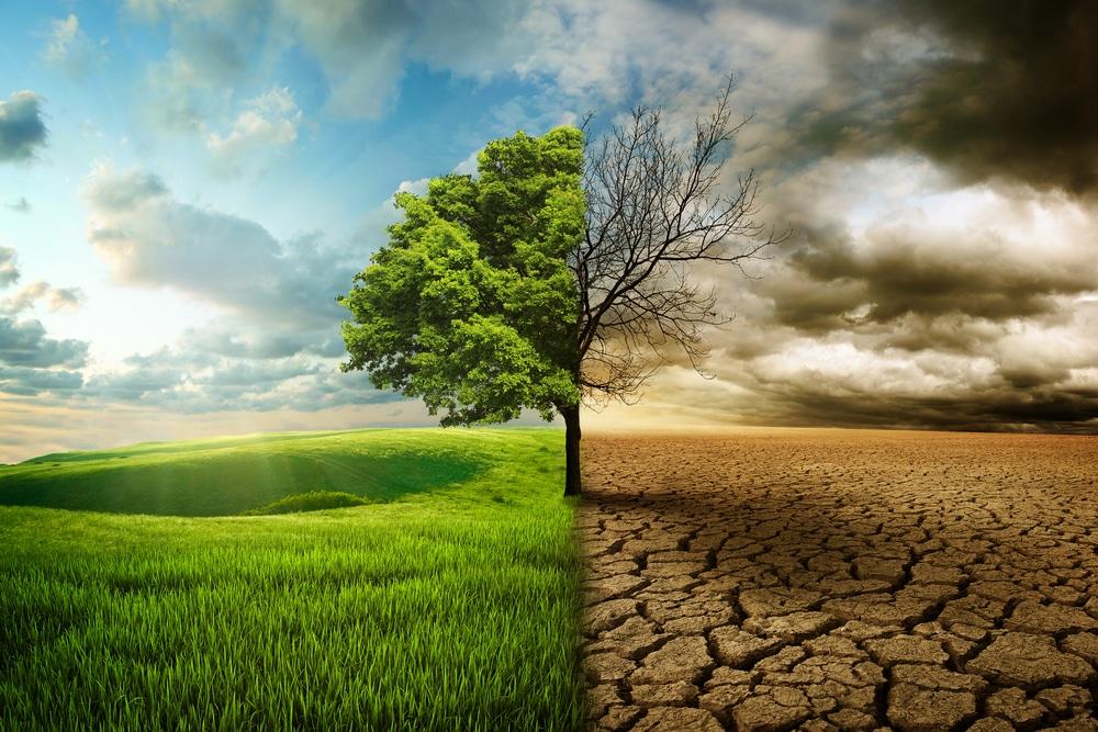 O efeito das mudanças climáticas
