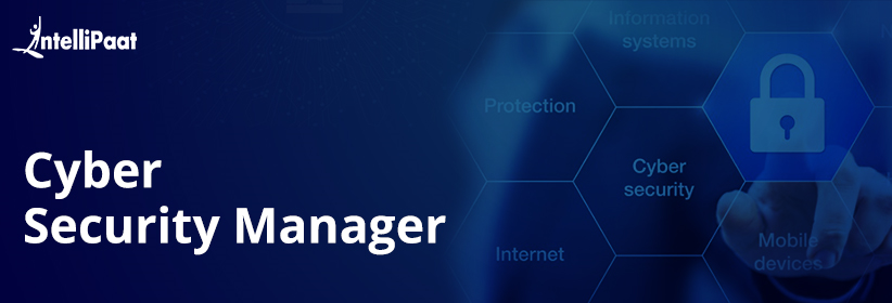Cyber Security Manager