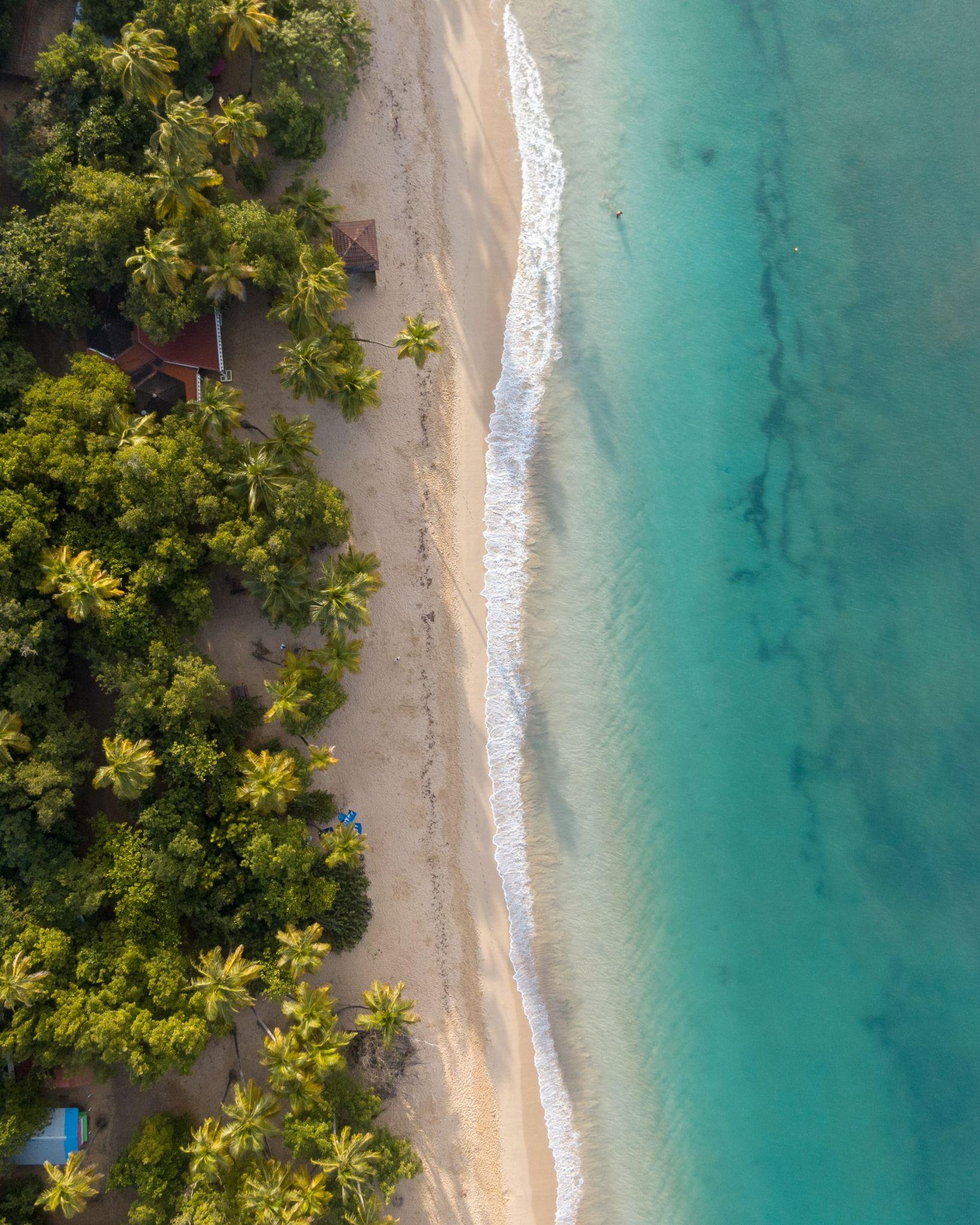 Beach in Martinique