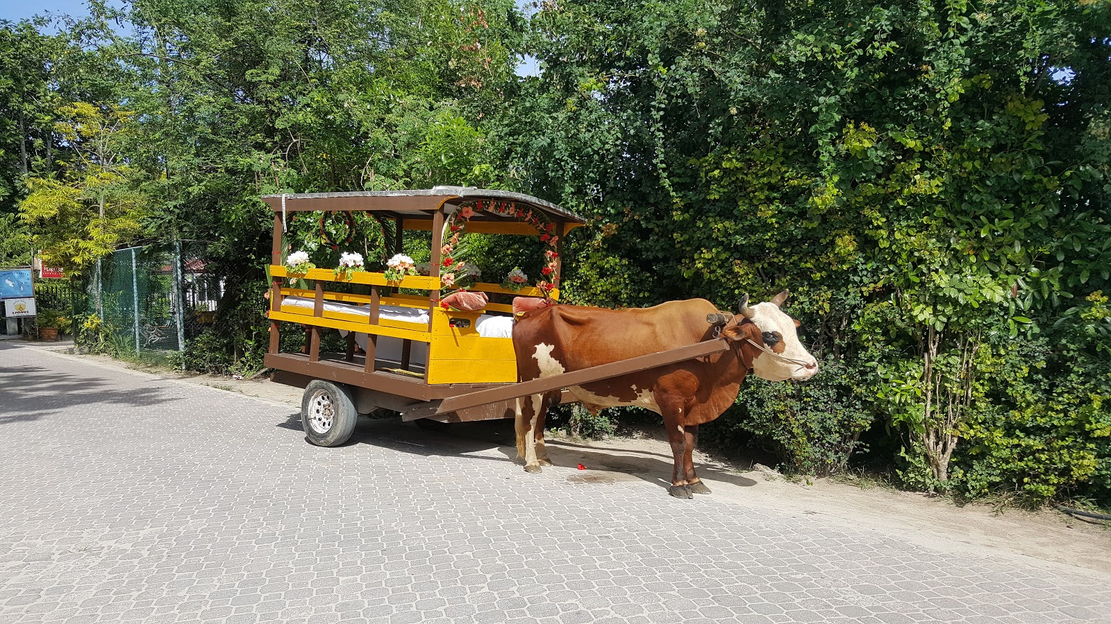 Alternativ taxi på La Digue