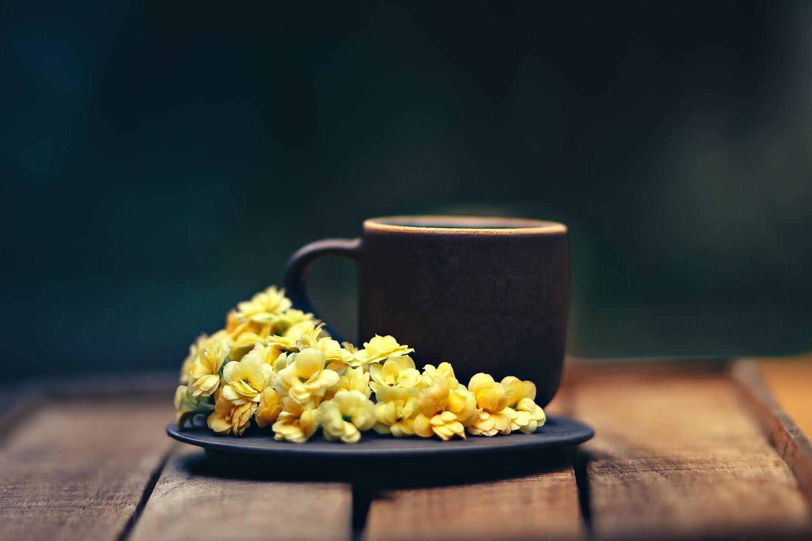 the 8 best teas for an upset stomach - cup & leaf