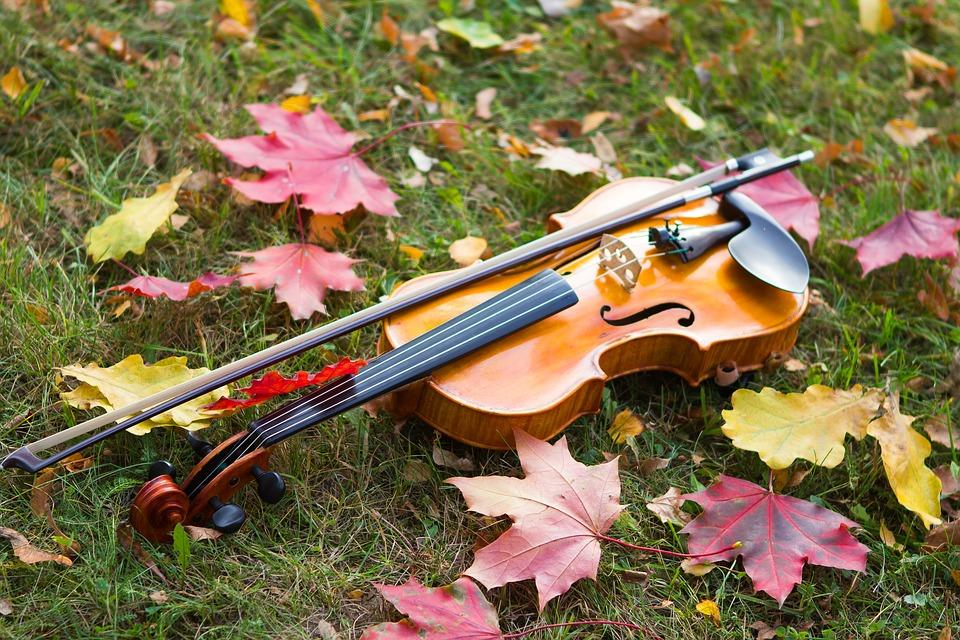 Autumn, Violin, Musical Instrument, Mood, Grass