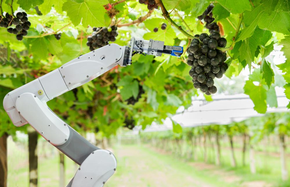 Em breve, a lavoura pode se tornar totalmente automatizada. (Fonte: Shutterstock)