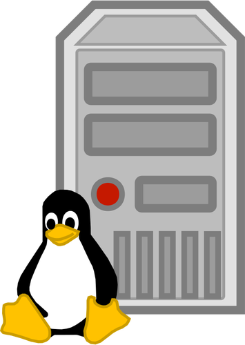 Color vector image of Linux server