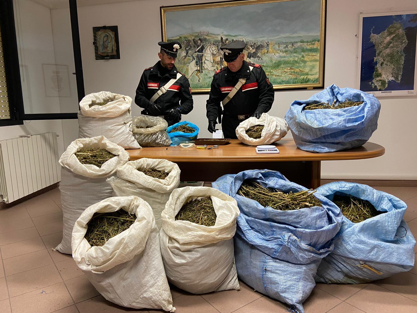 sequestro 73 kg marijuana