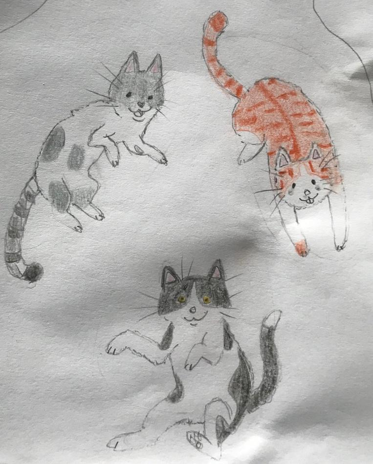 A drawing of a cat  Description automatically generated