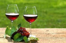 vino bilaketarekin bat datozen irudiak