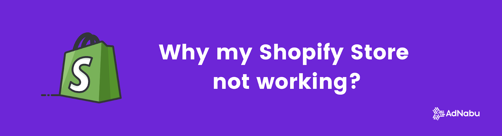Why is My Shopify Store not Working