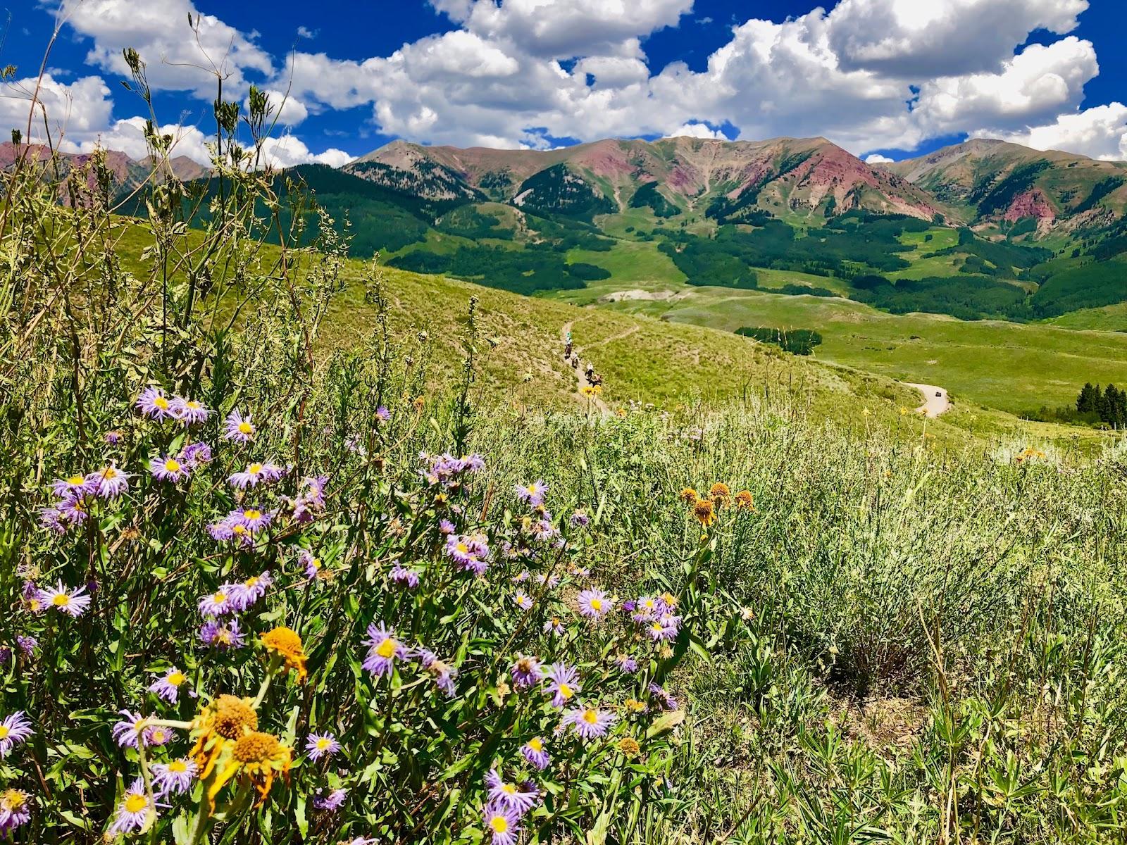 April Community Insider Crested Butte
