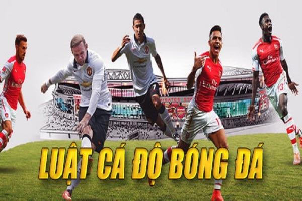 cadobongda | Luật chấp banh trong cá độ bóng đá cho người chơi mới