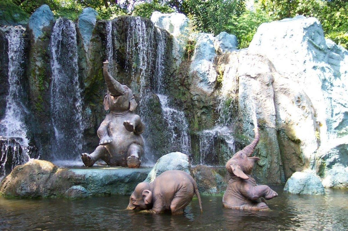 Image result for 5. Dubare Elephant Camp images