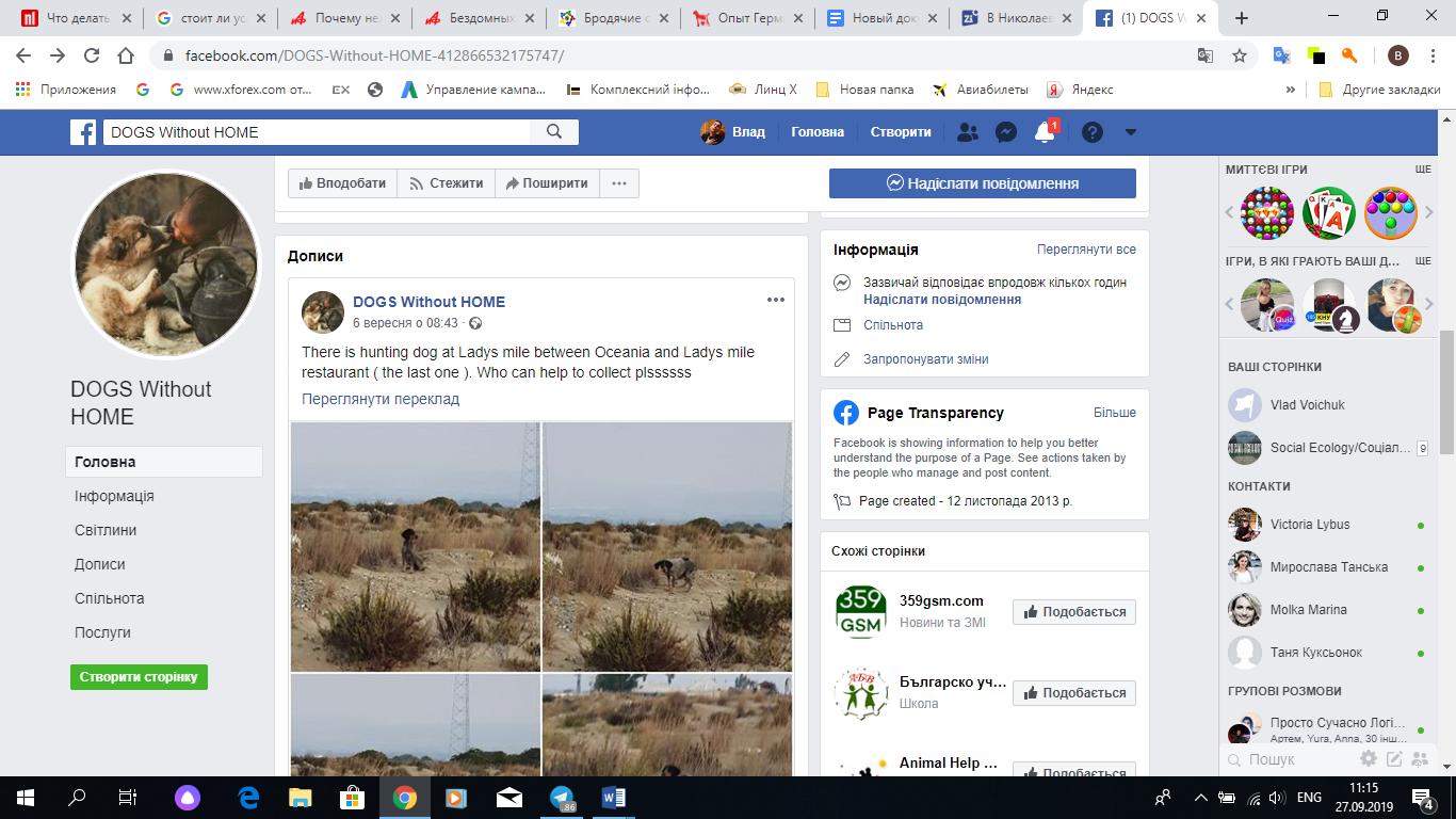 Пример грецкого Facebook-сообщества, которое помогает бездомным животным.
