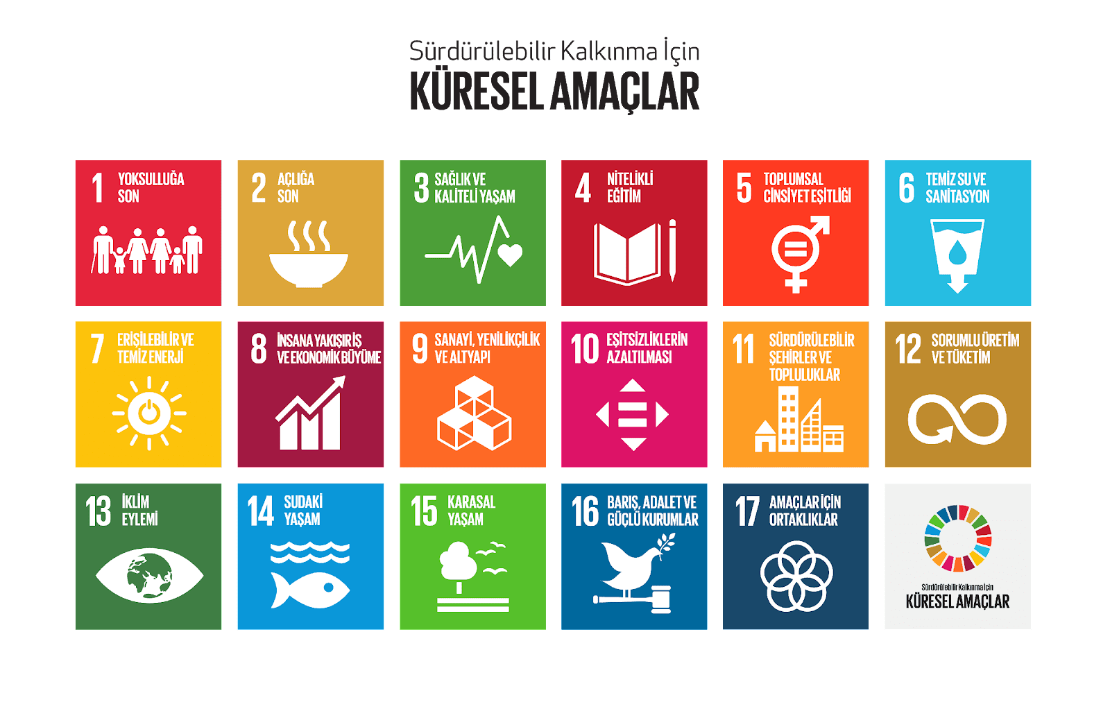 C:\Users\Ata Selçuk\Desktop\SUSTAINABILITY\SDGs\SKA.png