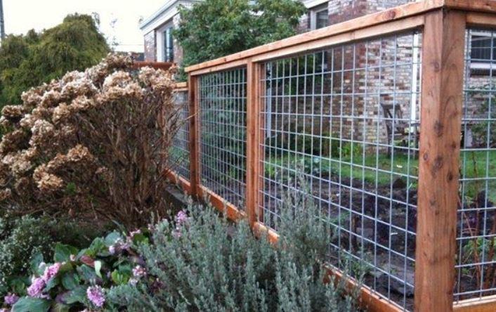 cheap fence ideas