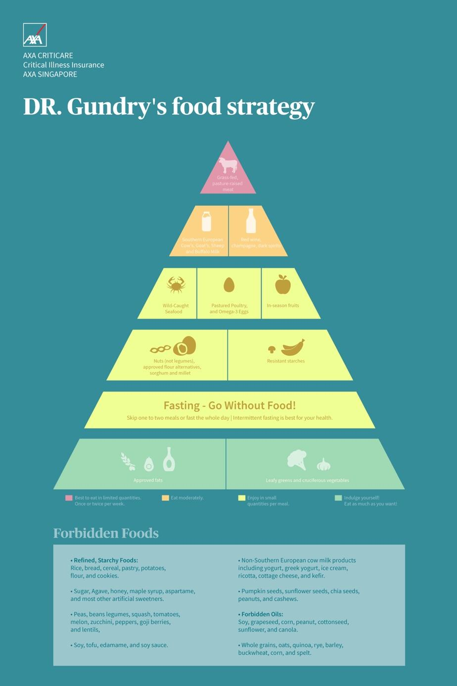 Gundry Diet Food Pyramid