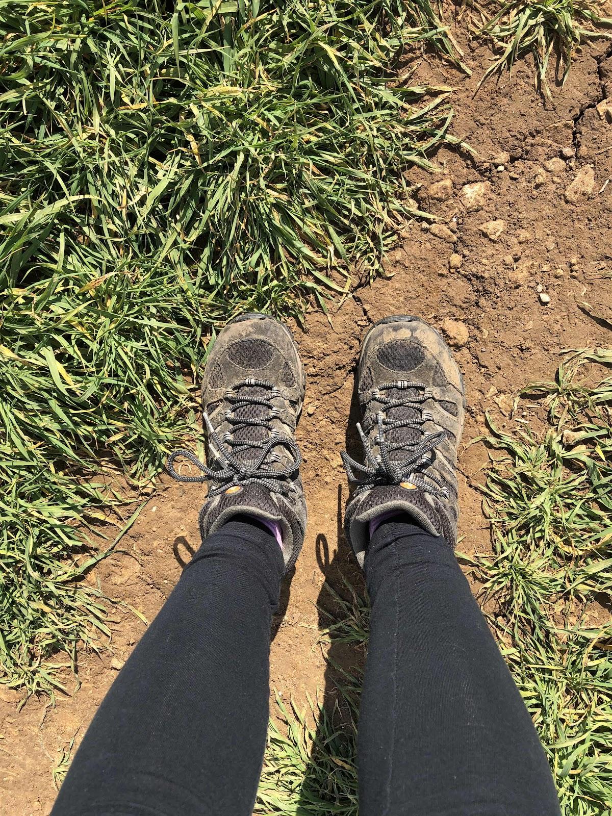 Muddy walking boots on a narrow path along a field