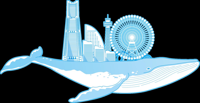 Yクジラ.png
