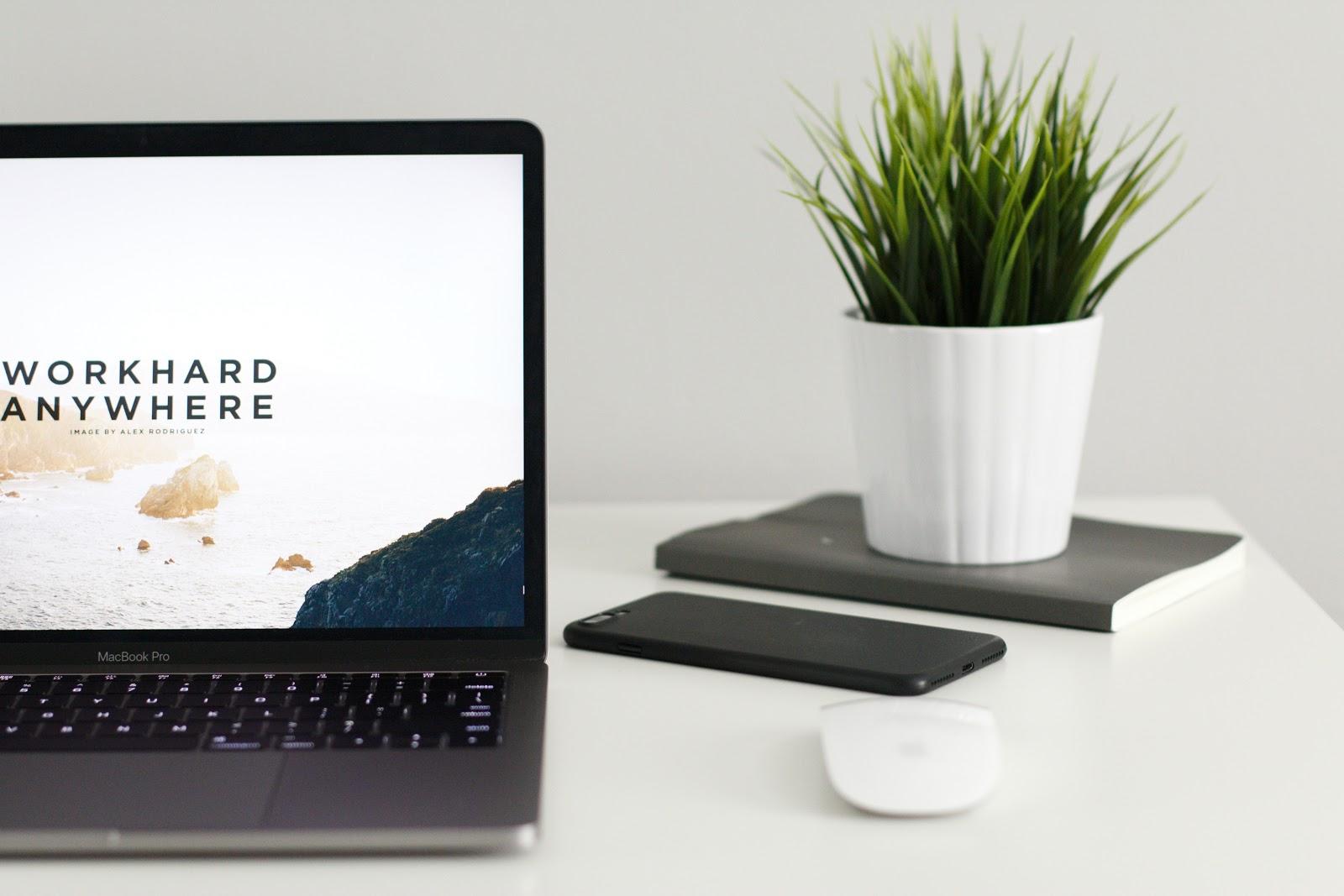 Форматы работы веб-дизайнера