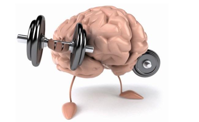 Improves-Brain-Function.jpg