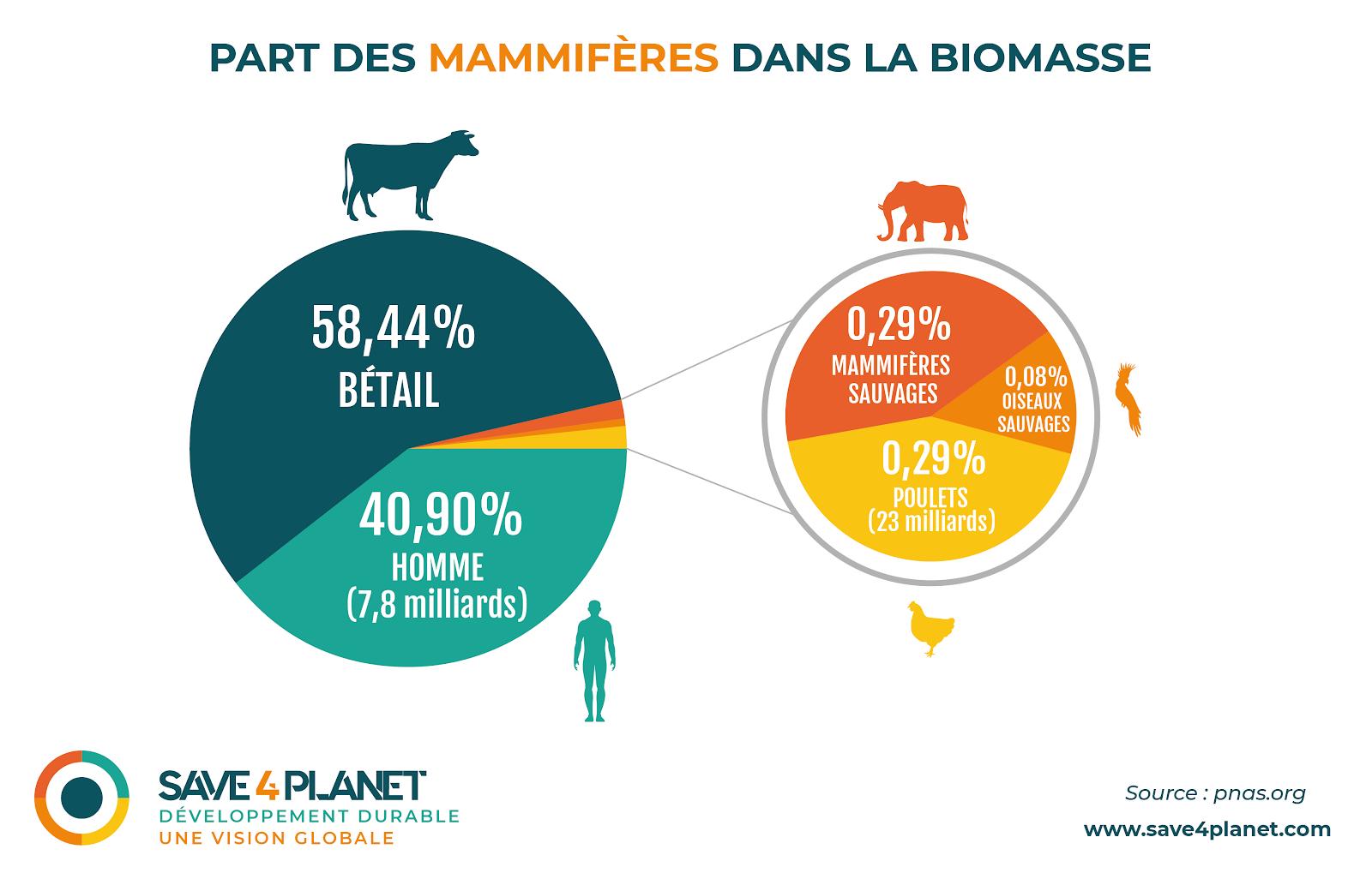 Part mammifere biomasse