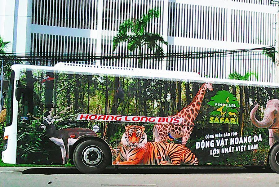 Xe buýt đi Vinpearl Safari