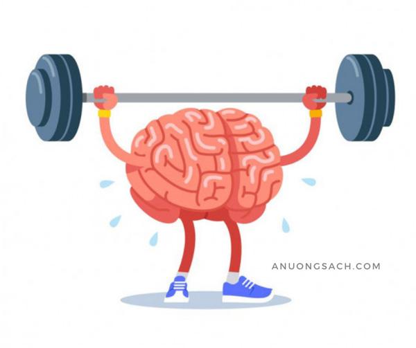 Thực đơn Krto tốt cho não bộ, tăng cường trí nhớ
