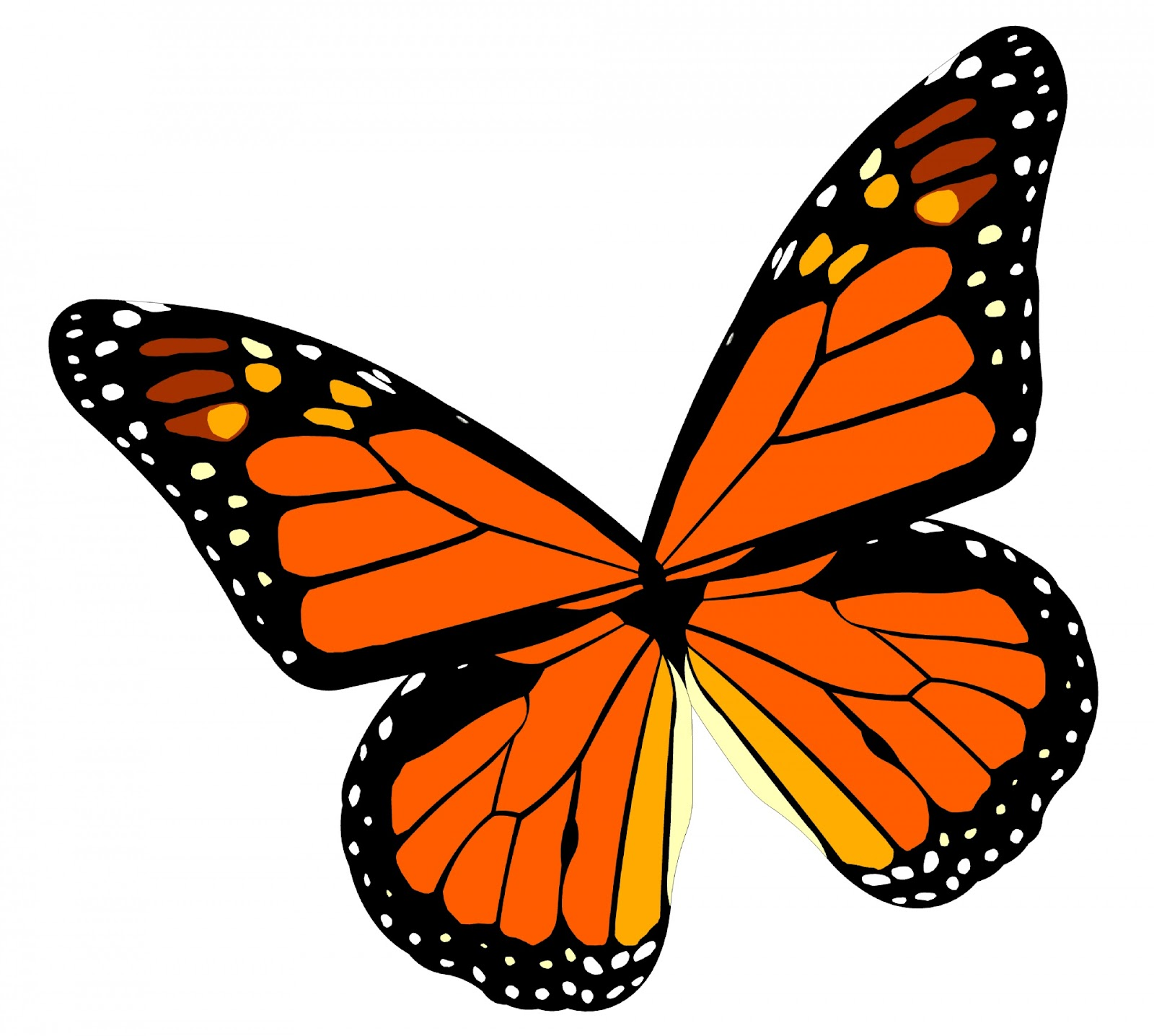 Monarch Butterfly Free Stock Photo - Public Domain Pictures