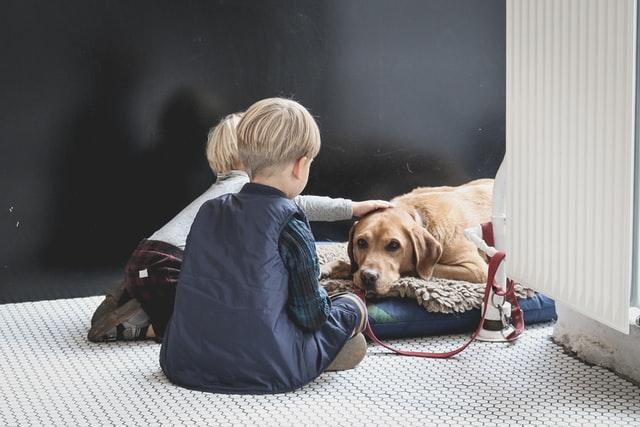 Keeping Your Kids and Pets Safe on Moving Day (4).jpg