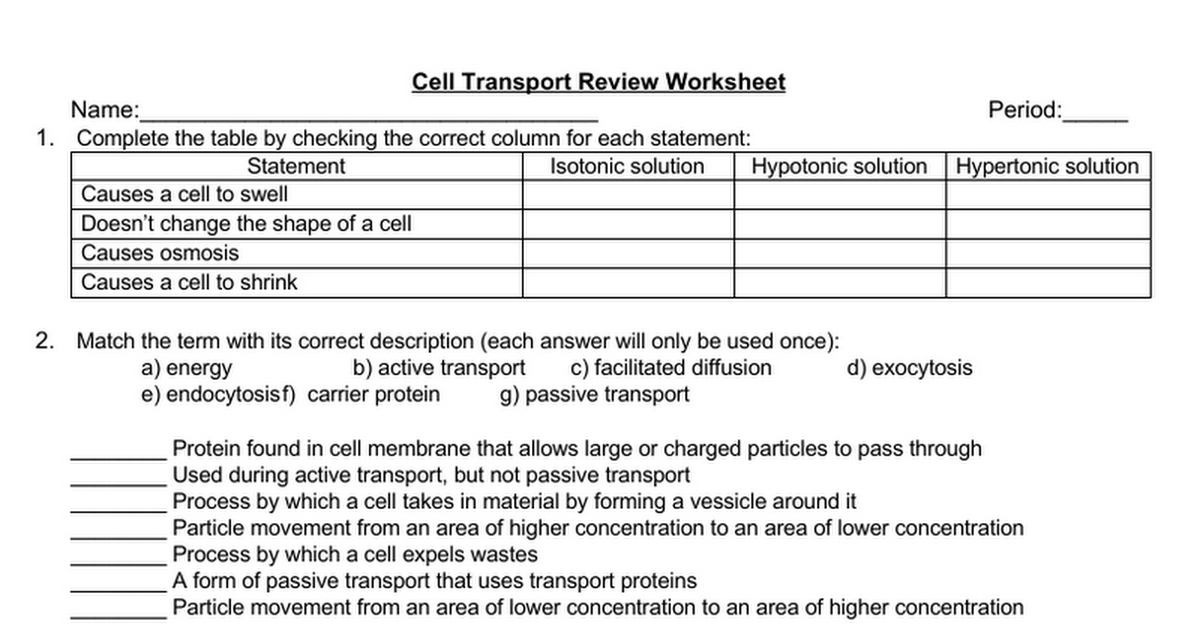 Cell Transport Review Worksheet Google Docs